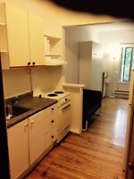Downtown Furnished bachelor TV, Internet, All Utilities Include