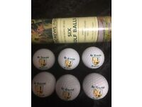 6 BRAND NEW GOLF BALLS IN STORAGE TUBE FROM ST ANDREWS - THE HOME OF GOLF