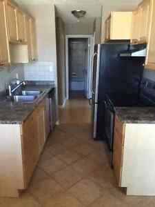 Reno'd Apartment - Mins from River Valley - Available Today!