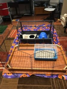 Guinea Pig/Rabbit Cage with Fence and Accessories
