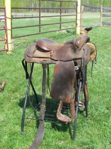 F EAMOR - ROPING SADDLE - Reduced Price