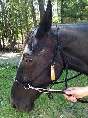 Black Natural Horsemanship Training Side Pull Bitless Bridle Rope Halter Rings