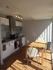 Newly renovated 2 bed flat City Centre! Utility bills & internet included!