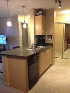 1 Bdrm 1 Bath in NW Hudson Village quiet family condo building.