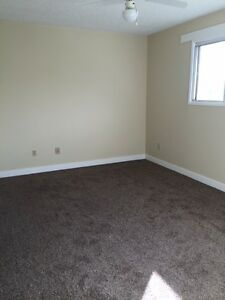 Newly Renovated Duplex in Clareview With Great Incentive! Edmonton Edmonton Area image 6