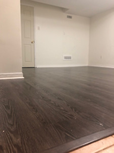One Bedroom Seperate Entrance Apartment - Available Oct/Nov