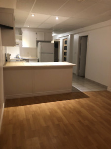 Large 1 Bedroom Apmt , Kingston West End