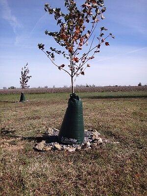 DeWitt Tree Watering Bag - Slow Release Irrigation 8-PACK