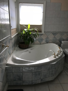 Massage Tub/Faucets/Accessories