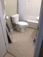 Looking for someone to redo bathroom