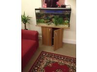 Aquarium with stand and accesories