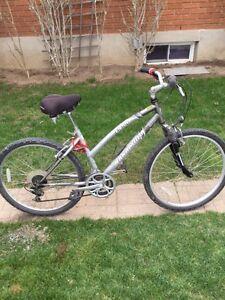 Mountain Bike  CB100 NAKAMURA