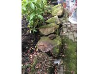 Sandstone rocks for rockery or garden borders FREE!