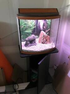Nice fish tank stand and Screen top