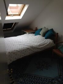 Double room available in family house in Southville