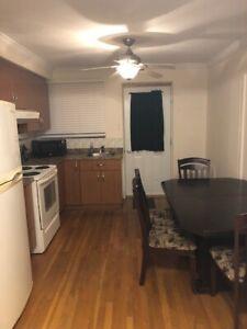 Appartement 2 1/2 meublé à louer