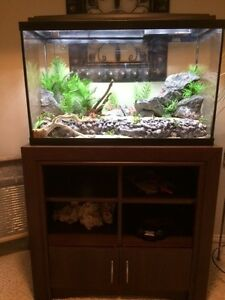 36 gal Fish tank, stand and all accessories