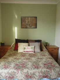 Furnished double room available Mon-Fri in Barbourne, Worcester