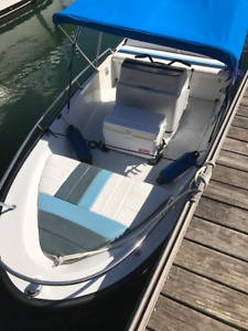 Boston Whaler Jet Boat and Trailer