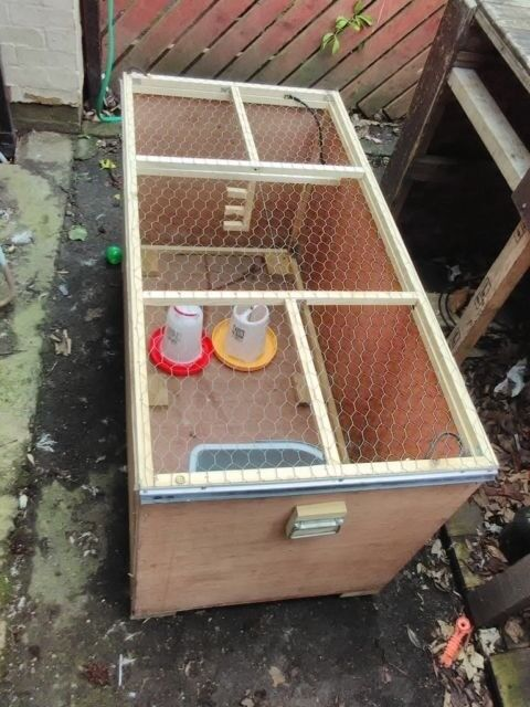 how to build a quail brooder