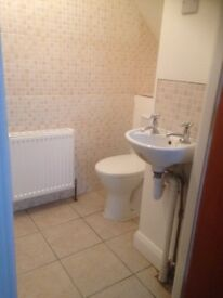 Newly renovated modern two bed flat Cromwell road just of Botanic , fully furnished FREE WIFI