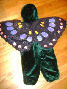 Déguisement papillon