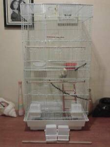Looking for bird cages St Morris Norwood Area Preview