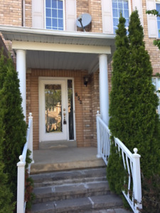 Basement for Rent- Vaughan- Sonoma Heights