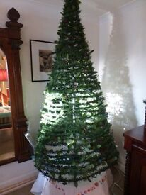 Christmas Tree - Unusual Shape - Collect Llanafan or Morrisons, Aberystwtyth