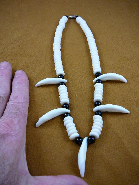 "W-30-15) 1-5/8"" COYOTE wild dog 5 Tooth wht blk aceh bovine bone NECKLACE"
