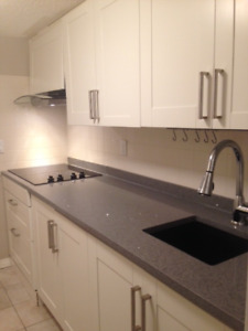Fully Furnished Basement Suite in Silverado, SW