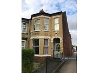 4 bedroom house in Salisbury Street, Hull, HU5 (4 bed)