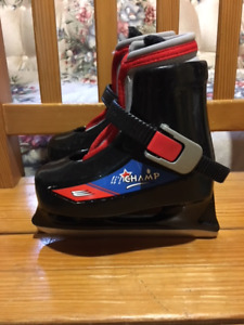 Boys/Toddler Youth Size 6/7 Lil Champ Skates for sale - $20.