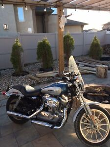 Must go! Price lowered 2006 Harley Sportster 883 for sale