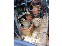 Selection of terracotta and ceramic plant pots for the garden £5 each