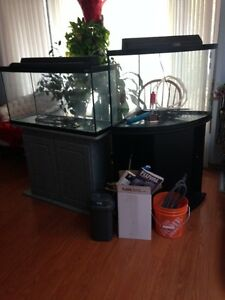 2 Fish Tanks and Stands, Filter system, Heater, Water Testing