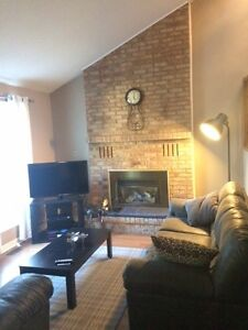 Renovated home, newly furnished room for rent, close to UW/WLU Kitchener / Waterloo Kitchener Area image 7