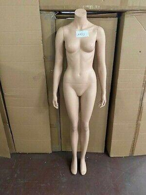 Mannequin Doll Fashion Doll Female V1105 Woman Doll Bust