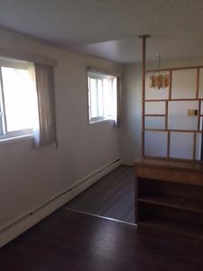 Beautiful newly renovated spacious 2 Bdrm suite available now!