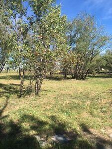 6 Acres Vacant Land Magrath AB