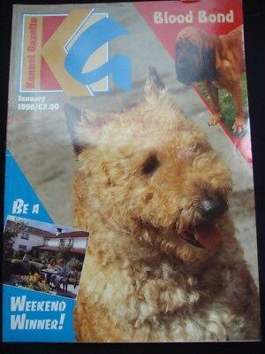 Kennel Club Vintage Kennel Gazette Pedigree UK Show Dog Magazine Briard Mint