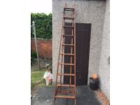 Wooden ladders...extendable