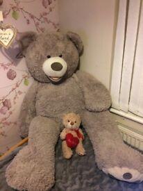 LARGE PLUSH TEDDY BEAR!