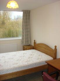 Headington Female house share 3 rooms available Master Balcony & double