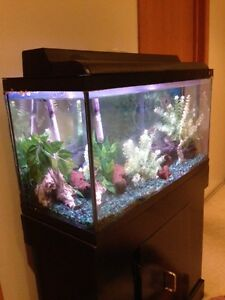 """""""Hagen"""" 25-gallon tropical fish tank with black stand"""