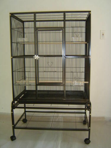 "New Bird Parrot Cage 32Lx20Wx53H Bar Spacing 3/8"" Cockatiel Conure Finch Everila"