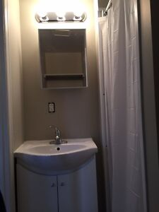 COZY AND BRIGHT 1 Bedroom Apartment–Elmira, ON–Only $825/mon Kitchener / Waterloo Kitchener Area image 12
