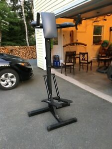Stepper/Dips/Leg Raise Exercise Machine
