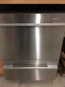 Fisher & Paykel dishwasher...new motor required.