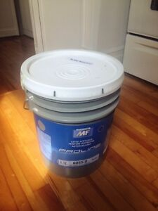 18.9L / 5 gallons Professional White Paint with built-in primer